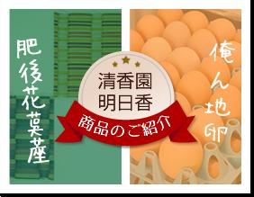 清香園 明日香 商品の紹介